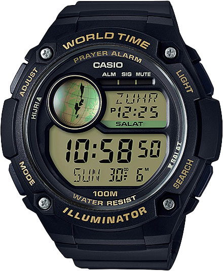 Casio CPA-100-9A - Standart Digital (электронные)